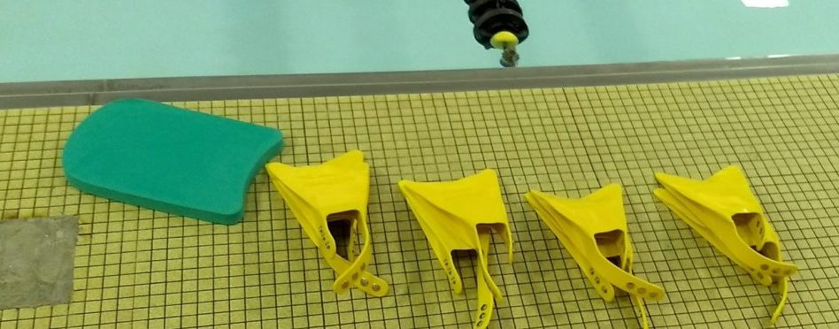 swim fins and kickboards